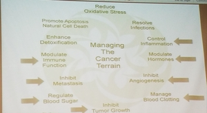 Managing the Cancer Terrain